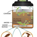 Mudwatt a bacterial battery